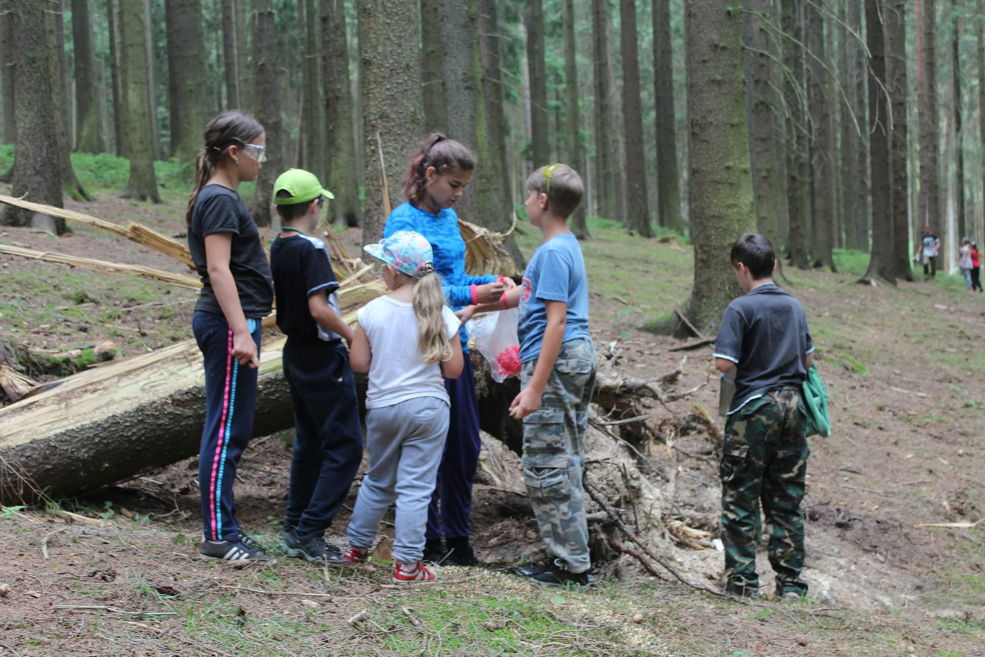 Skupinka našich dětí ve víru lesa